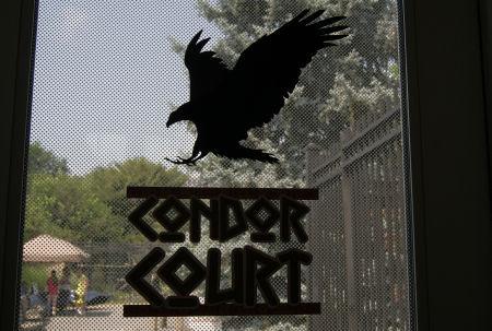 Condor Court