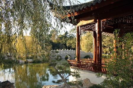 Chinese Garden Lake