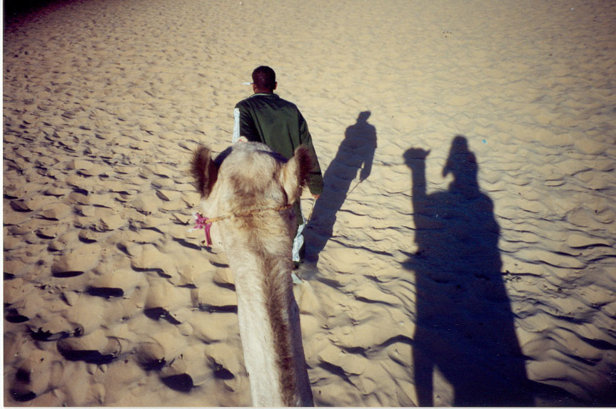 Camel and Follower