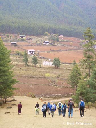 Gangtey Walk