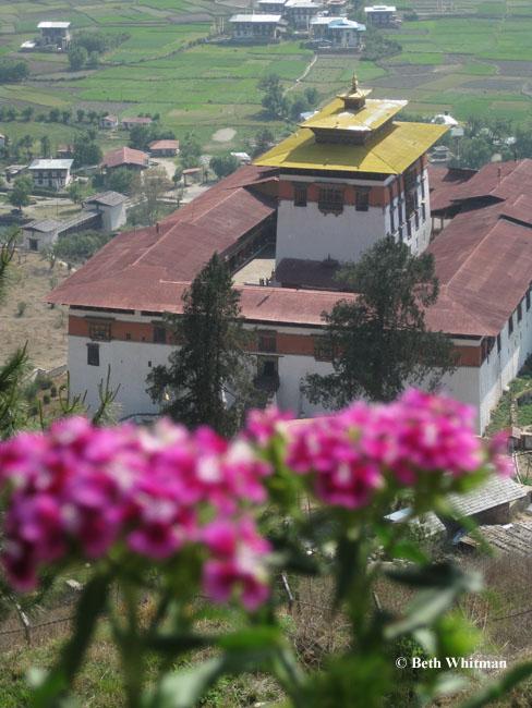 Bhutan April, 2009: Update 1