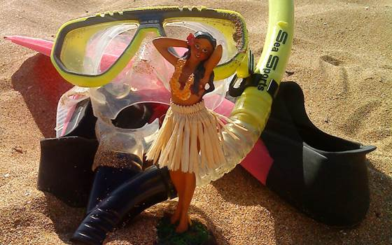 Snorkel and hula girl photo