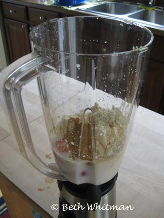 GSI Vortex Blender 5