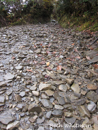 Eastern Bhutan trek path Merak & Sakten