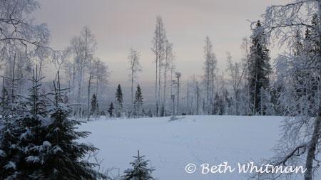 Hamar, Norway Snow