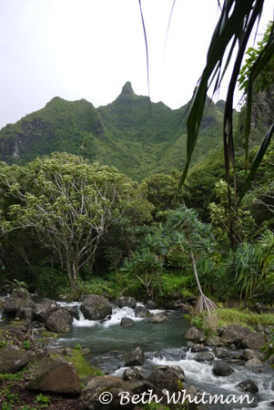 Limahuli Gardens, Kauai – Photo of the Day