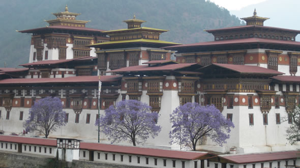 Bhutan Cultural Tour for Women