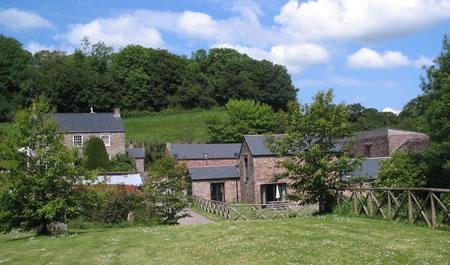 Beeson Farm