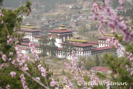 Bhutan Parliament Building