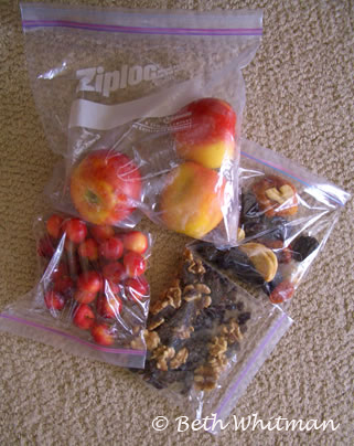 Snacks for airplane flights