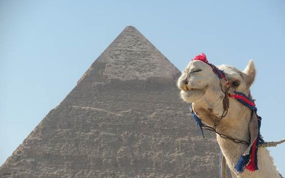 Pyramid and Camel