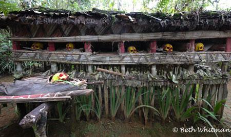 Huli Fortune Teller ~ Papua New Guinea