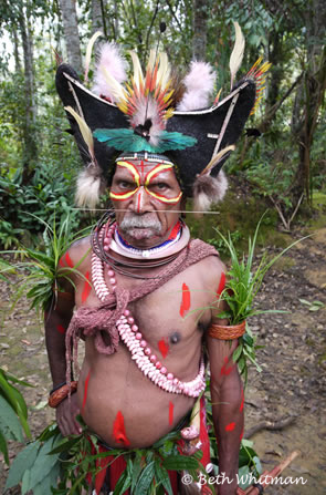 Huli Wigman in Tari Jungle, Papua New Guinea