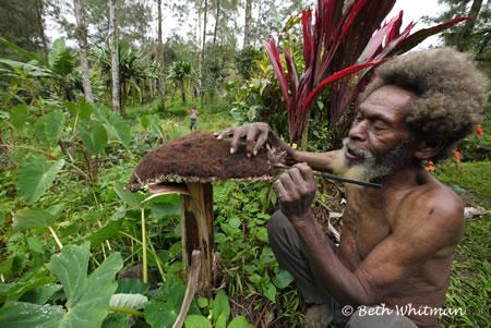 Wigman with Wig in Tari, Papua New Guinea