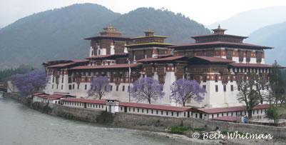 Bhutan April, 2009 Update 2