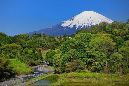 Mt Fiji