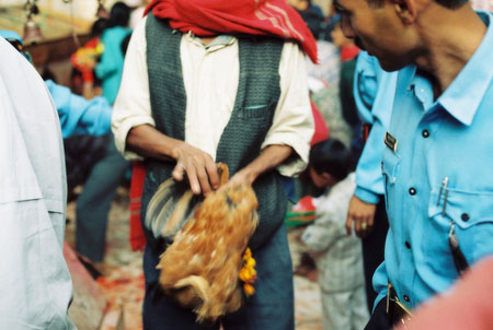 Dakshinkali Chicken Offering