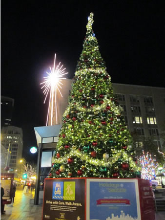 christmas tree seattle