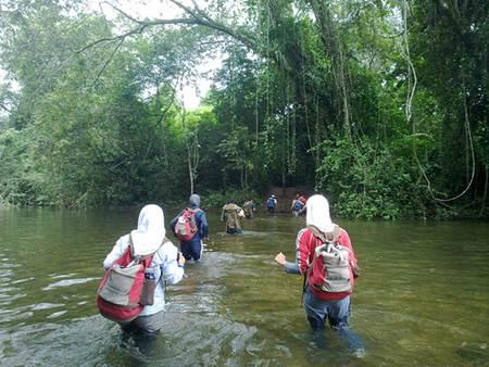 Trail to Actun Tunichil Muknal