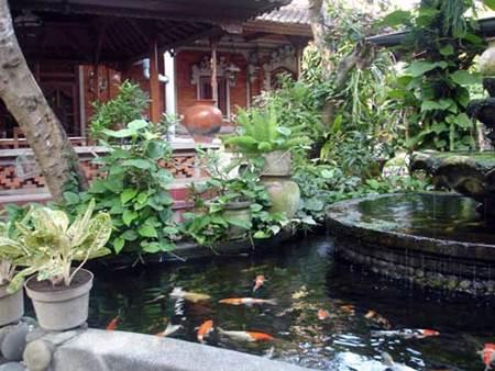Bali Small Hotel