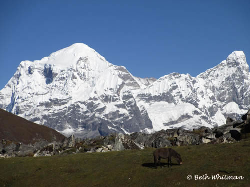 Snowman Trek Bhutan