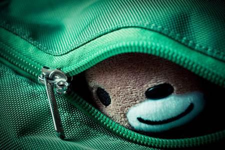 Stuffed Toy in Luggage