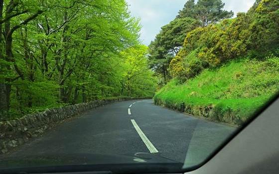 Ireland Roundtrips
