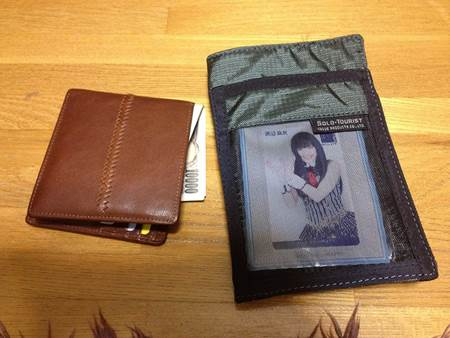 Wallet and Travel Organizer