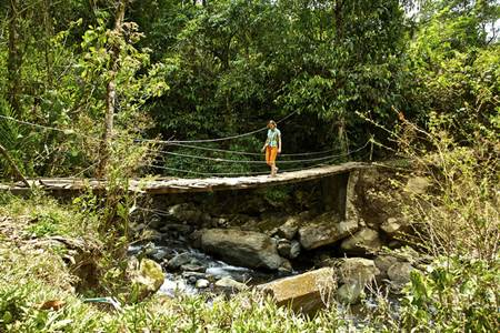 Chirripo Hanging Bridge