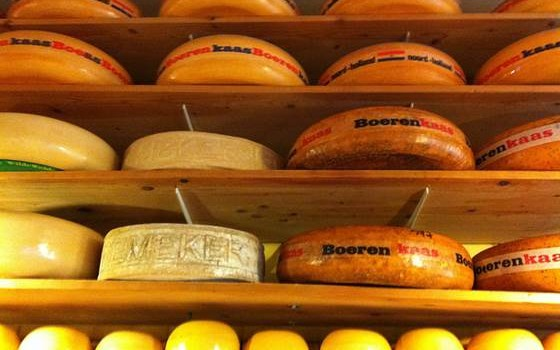 Holland Cheese