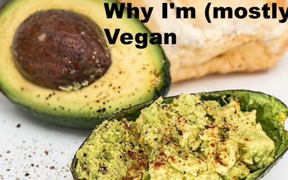 Vegan Traveler